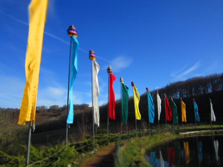 Still Flowing Yoga Méditation Mindfulness Charlotte Morin Poubeau