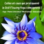 Still Flowing Yoga Méditation Mindfulness Charlotte Morin